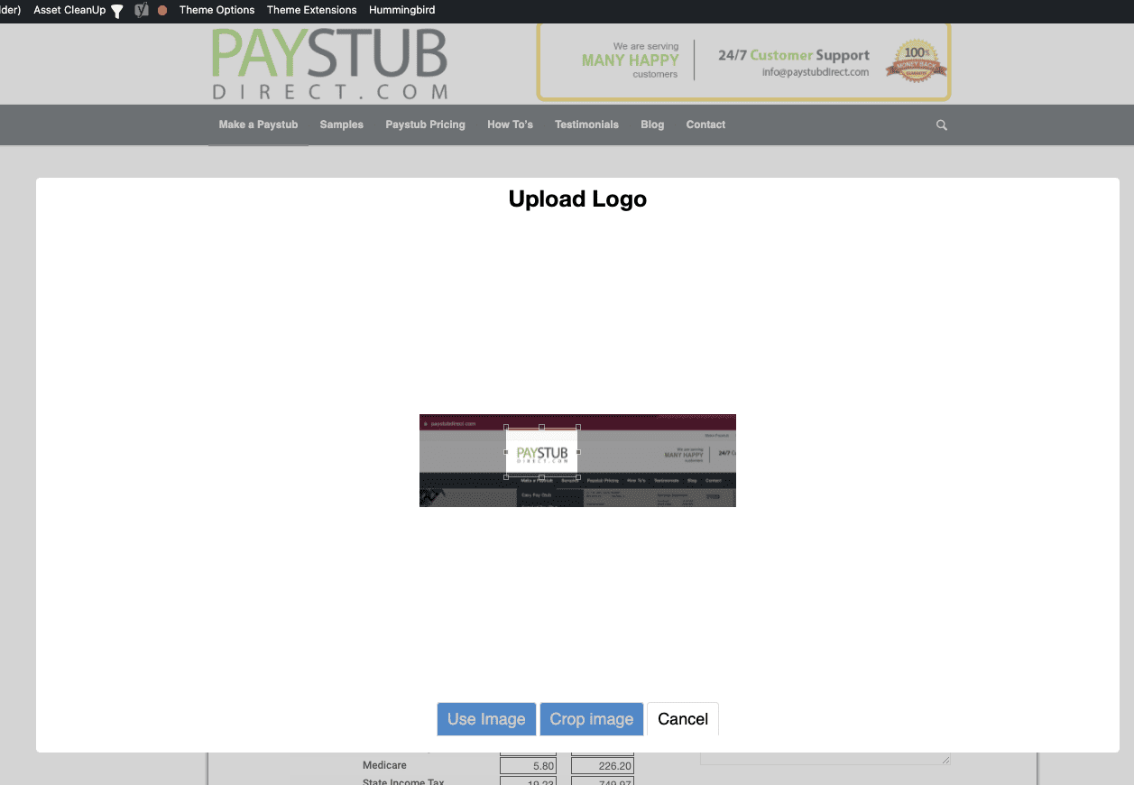 Showing steps to add a logo on your pay stub
